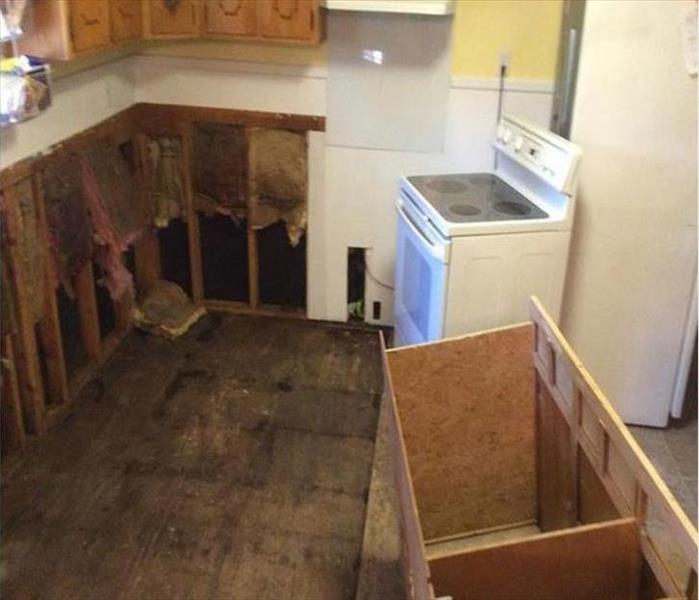 Kingston Mold Remediation for a Kitchen Before