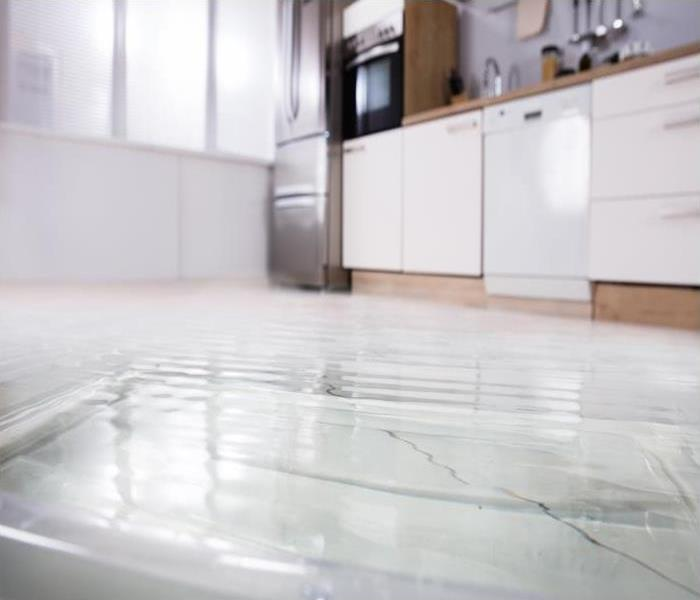 Water Damage What Are Highly Trained Specialists Look For When Scoping A Contaminated Property In Newmarket
